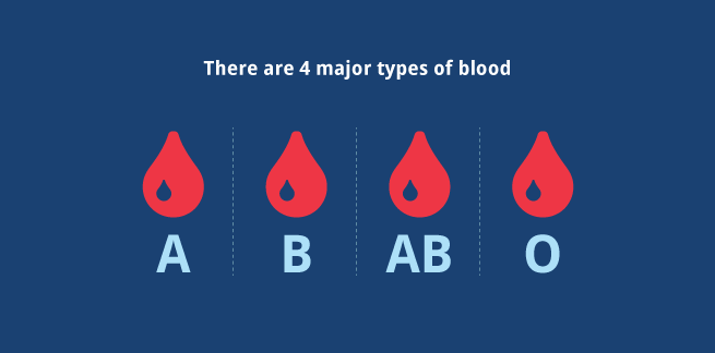 bloodgraphs1_655